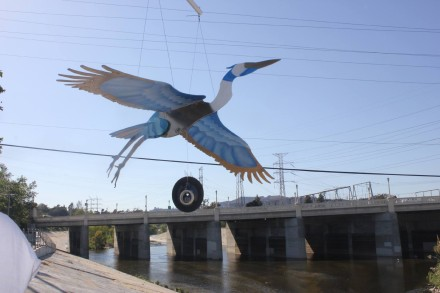 2014 Grantee, River of Wings`